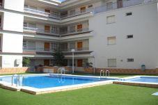 Apartamento en primera línea de playa de Alcoceber / Alcossebre