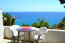 Estudio en primera línea de playa de Tossa del mar
